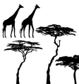 African animals giraffe silhouettes vector