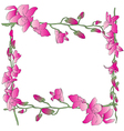 Long orchids frame vector