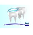 Banner toothpaste teeth vector