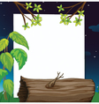 Evening forest border vector