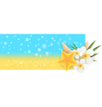 Summer horizontal banner vector