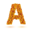 Autumn fall bright orange leaves letter vector