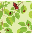 Flower background with butterflies and dragonflies vector