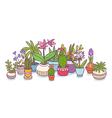 Plants in pots vector