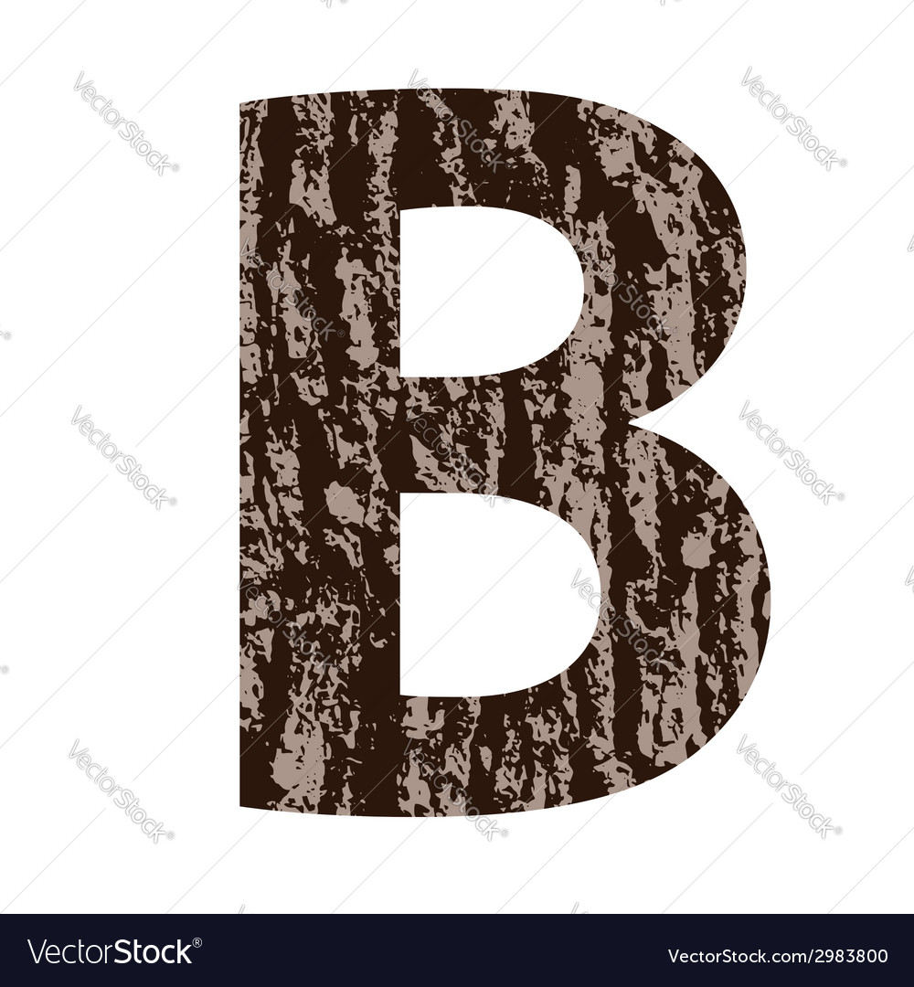 Wooden letter b made from oak bark vector | Price: 1 Credit (USD $1)