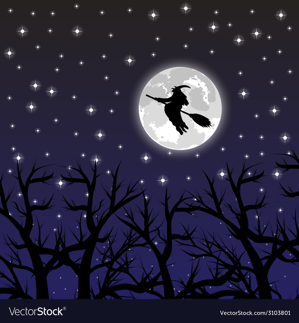 Witch flying on a broom on a full moon vector | Price: 1 Credit (USD $1)