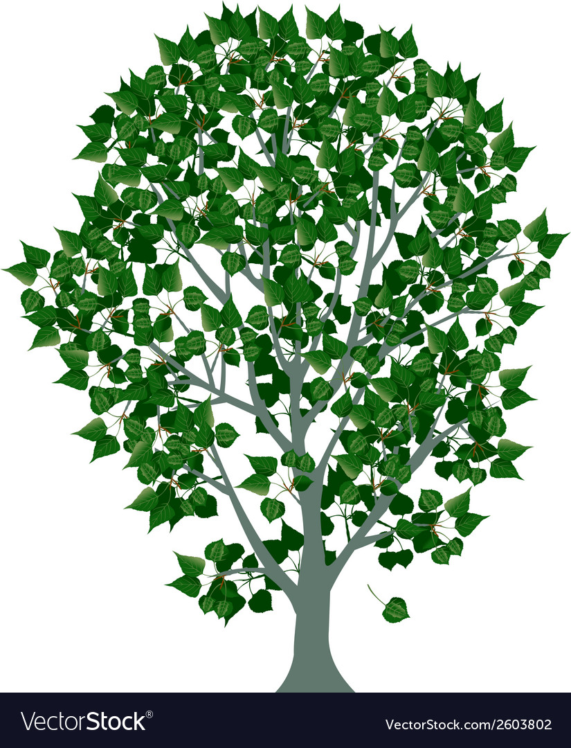 Tree designs vector | Price: 1 Credit (USD $1)