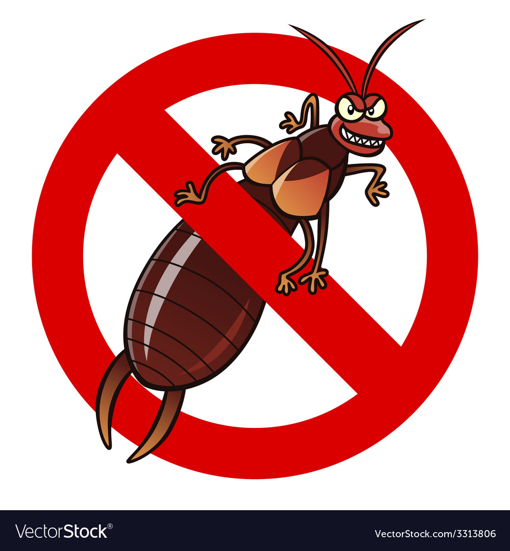 Anti earwig sign vector | Price: 1 Credit (USD $1)