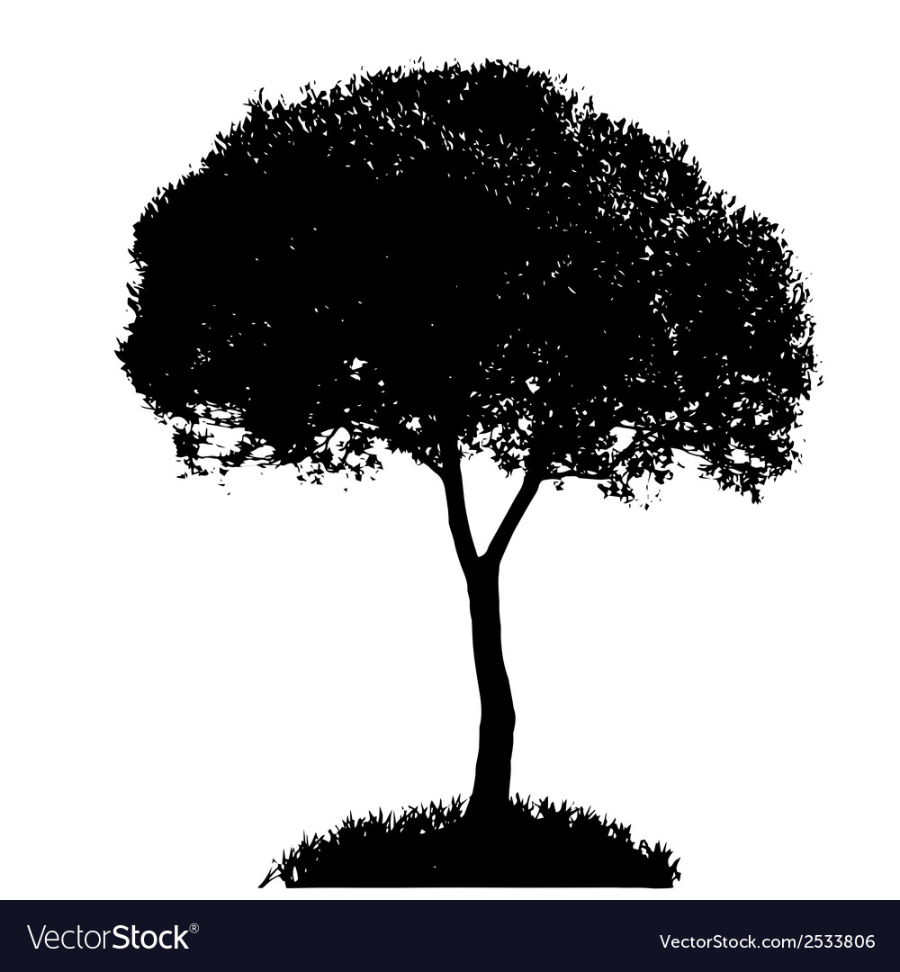 Tree silhouette isolated on white backgorund vector | Price: 1 Credit (USD $1)