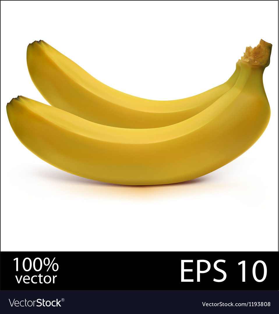 Two bananas in batch vector | Price: 1 Credit (USD $1)