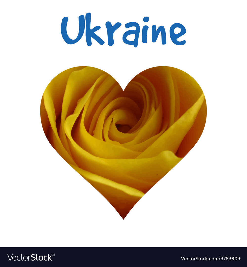 I love ukraine silhouette of ukraine with yellow vector | Price: 1 Credit (USD $1)