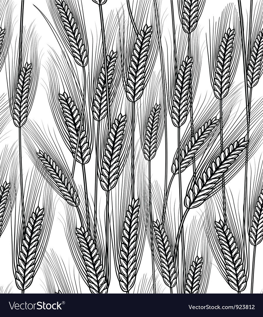 Seamless wheat ears background vector | Price: 1 Credit (USD $1)