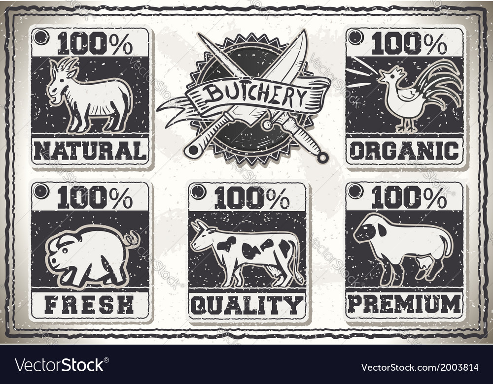 Vintage page for butcher shop labels vector | Price: 1 Credit (USD $1)