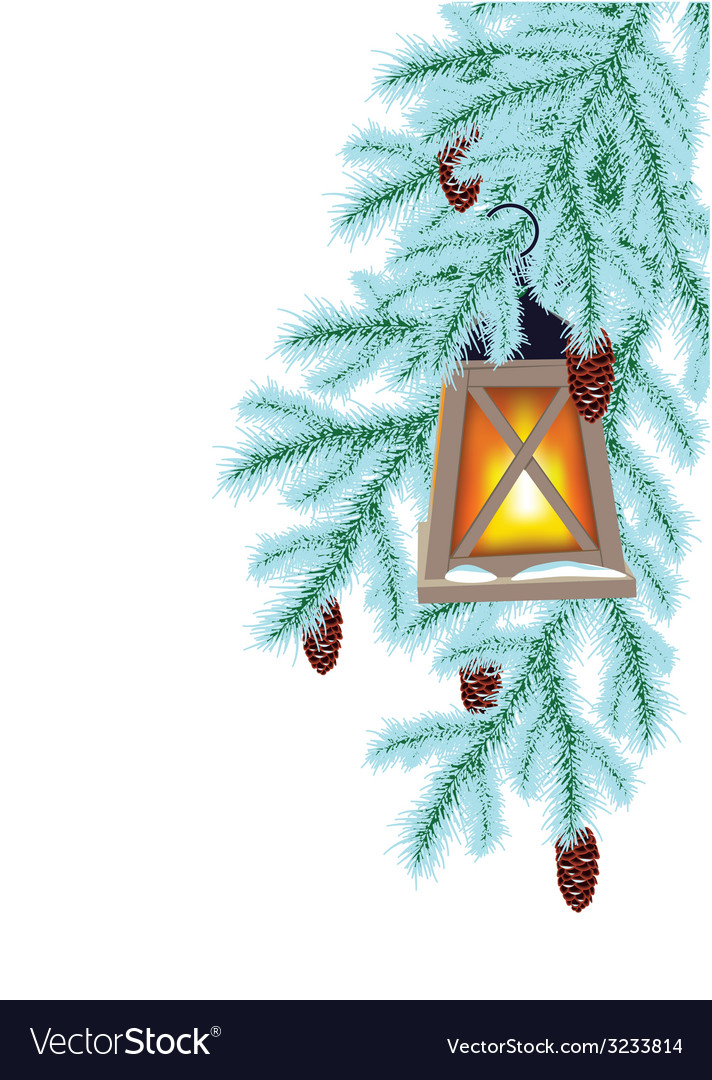 Winter fir and flashlight vector | Price: 1 Credit (USD $1)