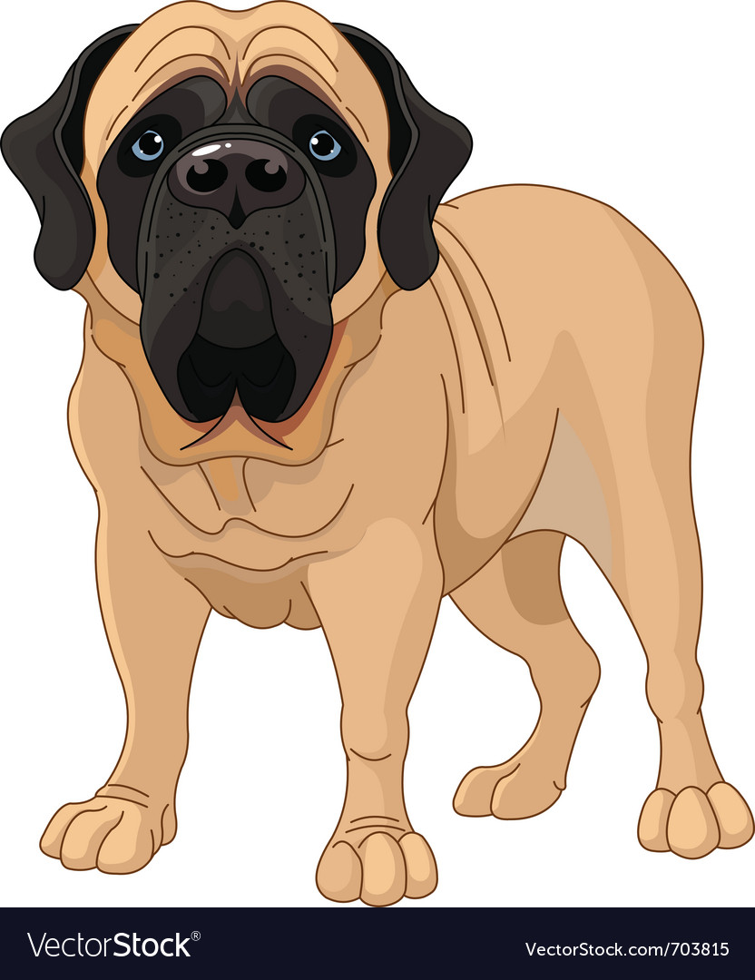 English mastiff vector | Price: 3 Credit (USD $3)