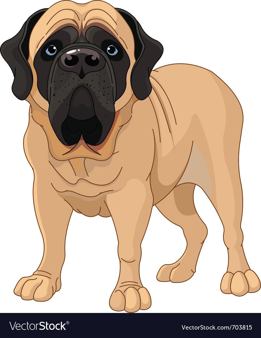 English mastiff vector | Price: 3 Credit (USD $3)