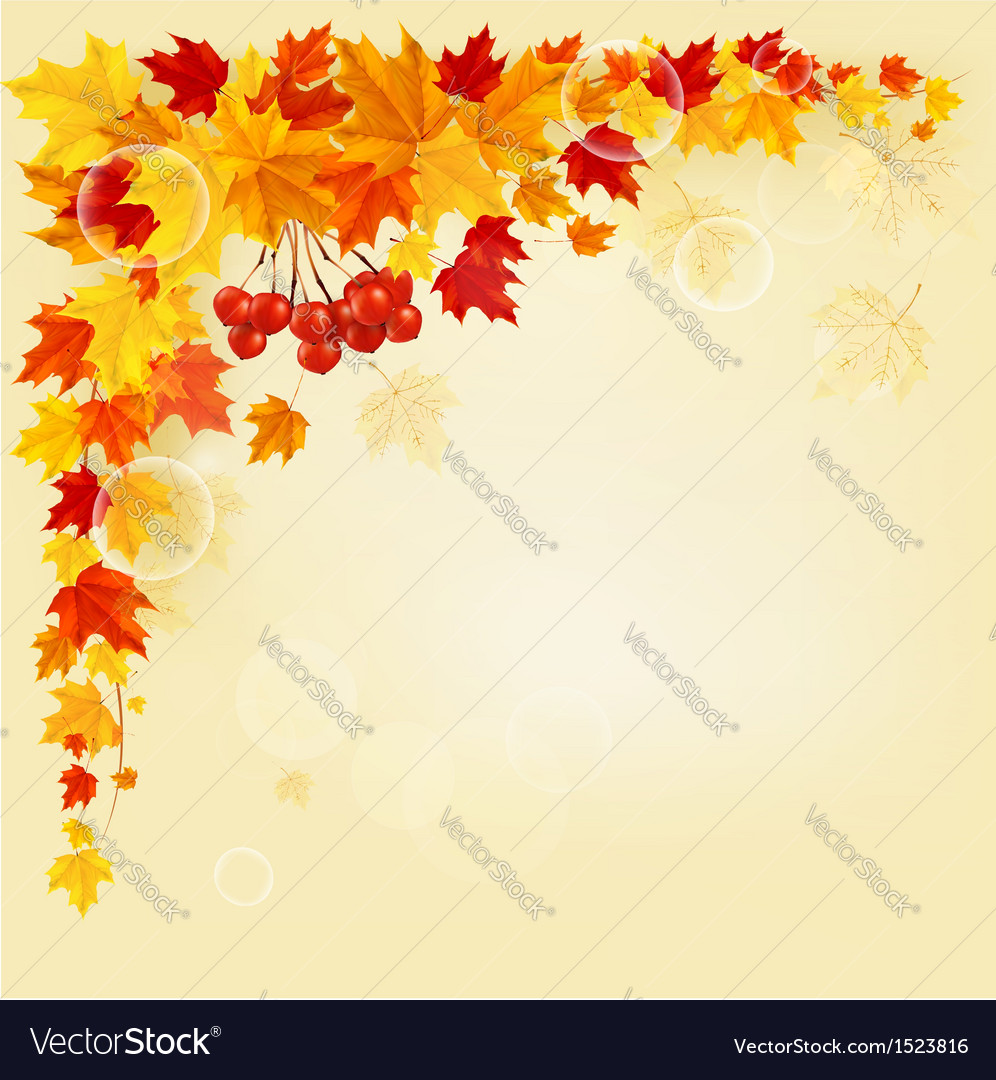 Autumn background with colorful leaves back to vector | Price: 1 Credit (USD $1)