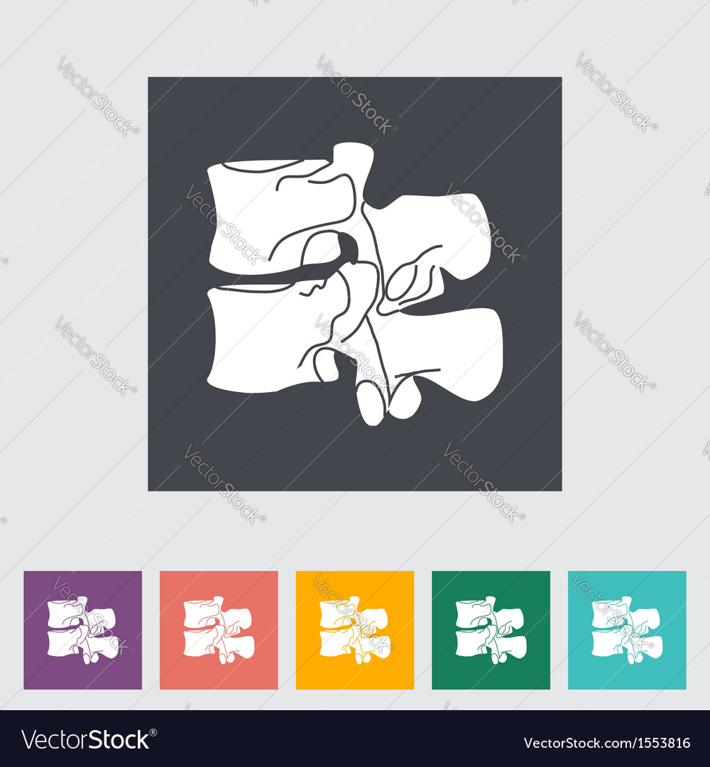 Spine vector | Price: 1 Credit (USD $1)