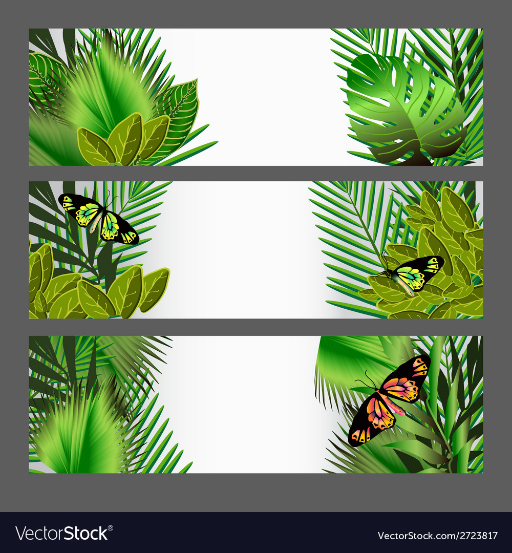Tropical green leaves set vector | Price: 1 Credit (USD $1)