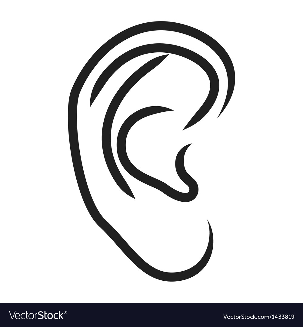 The human ear vector | Price: 1 Credit (USD $1)