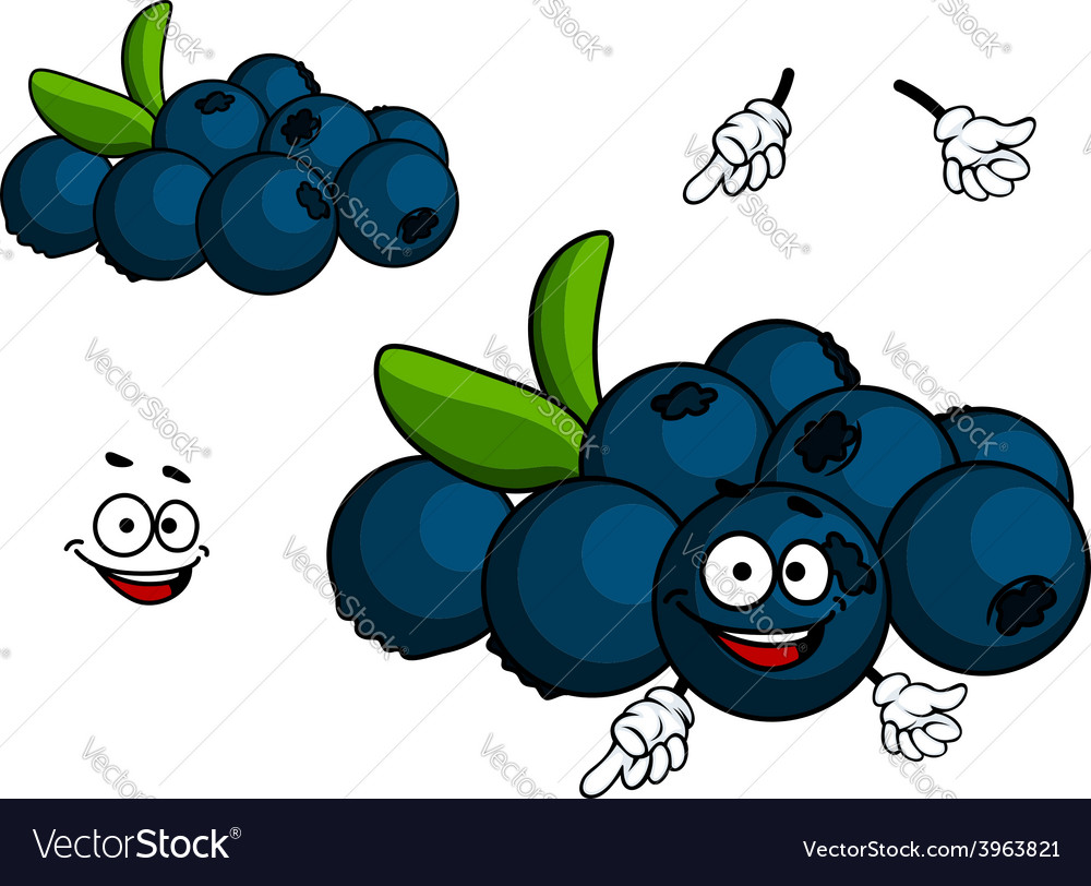 Cartoon blueberry character vector | Price: 1 Credit (USD $1)