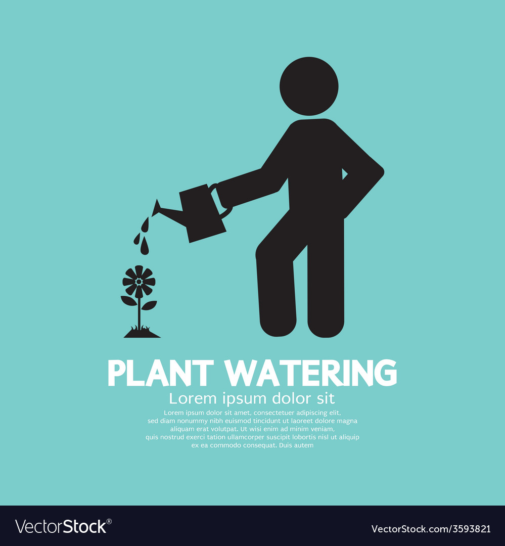 Plant watering with watering can vector | Price: 1 Credit (USD $1)