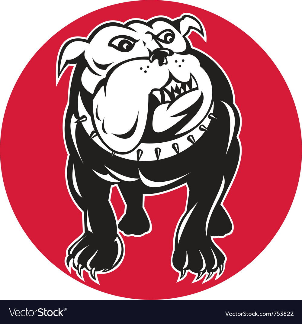 Bulldog mongrel dog facing front vector | Price: 1 Credit (USD $1)