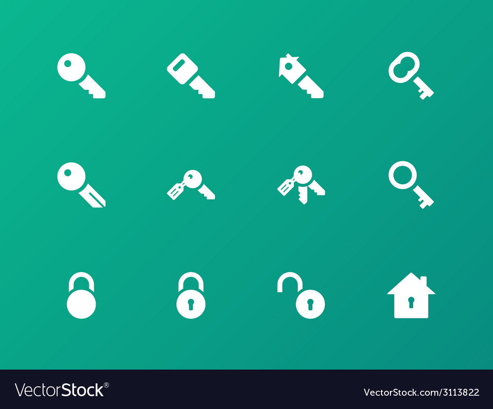 Key icons on green background vector | Price: 1 Credit (USD $1)