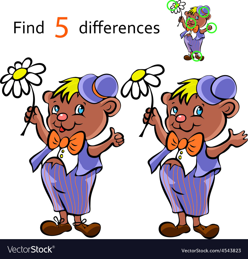 Find differences bear vector | Price: 1 Credit (USD $1)