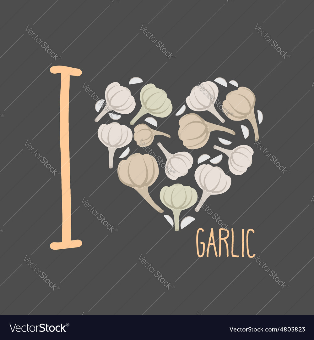 I love garlic heart of earthy garlic vector