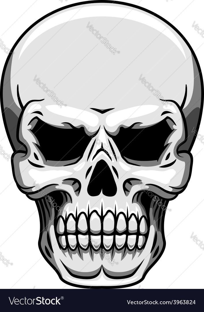 Gray human skull on white vector | Price: 1 Credit (USD $1)