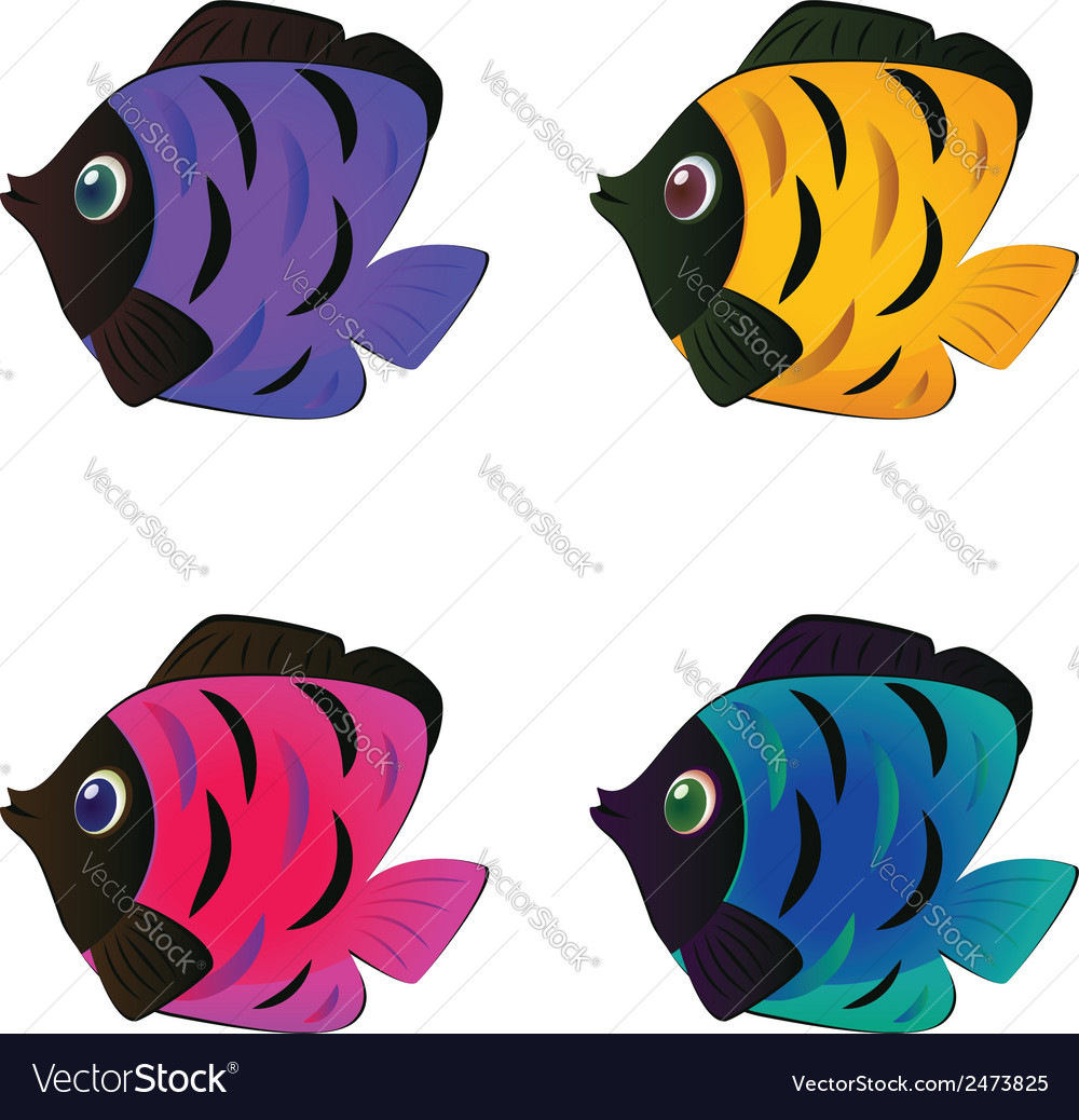 Colorful fishes2 vector | Price: 1 Credit (USD $1)