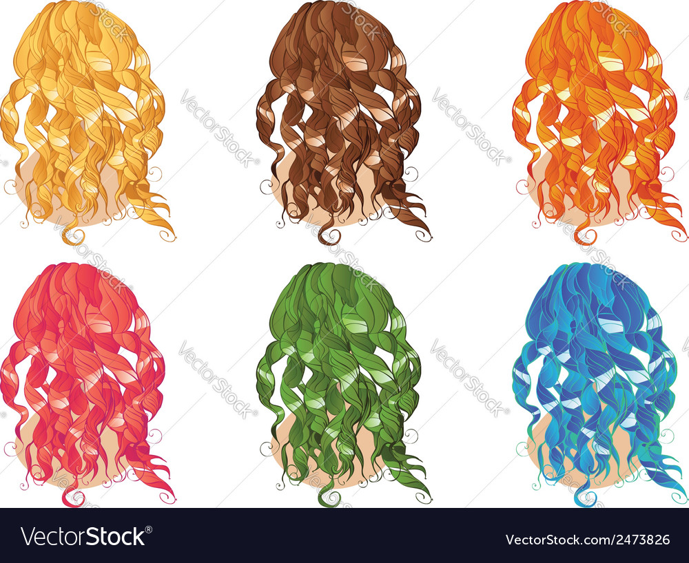 Curly hair styles vector | Price: 1 Credit (USD $1)