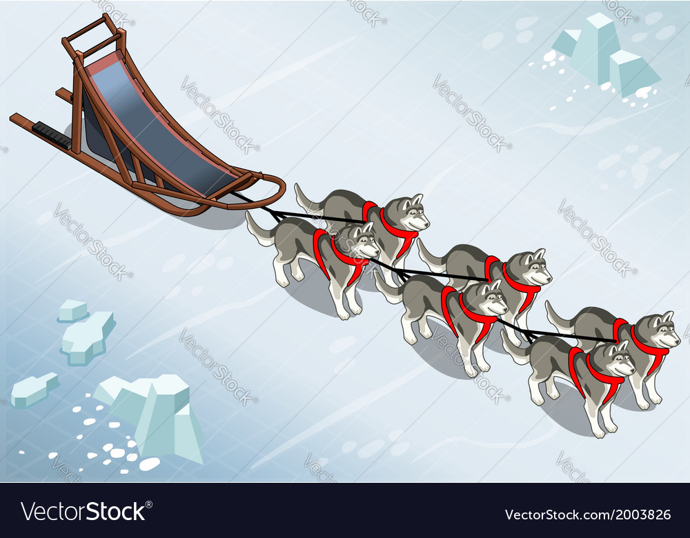 Isometric sled dogs in front view on ice vector | Price: 1 Credit (USD $1)