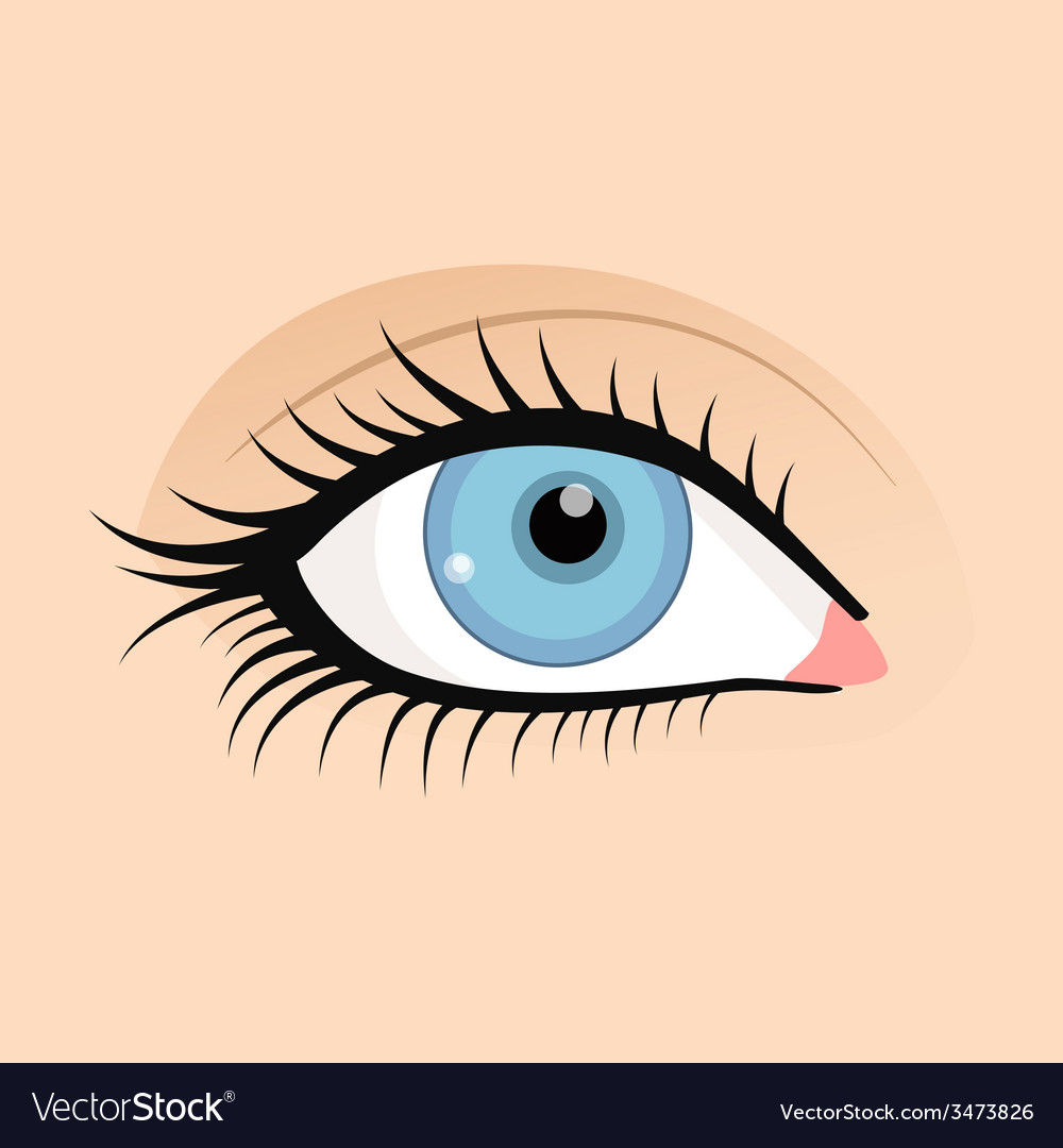 Open female eyes image with beautifully fashion vector | Price: 1 Credit (USD $1)