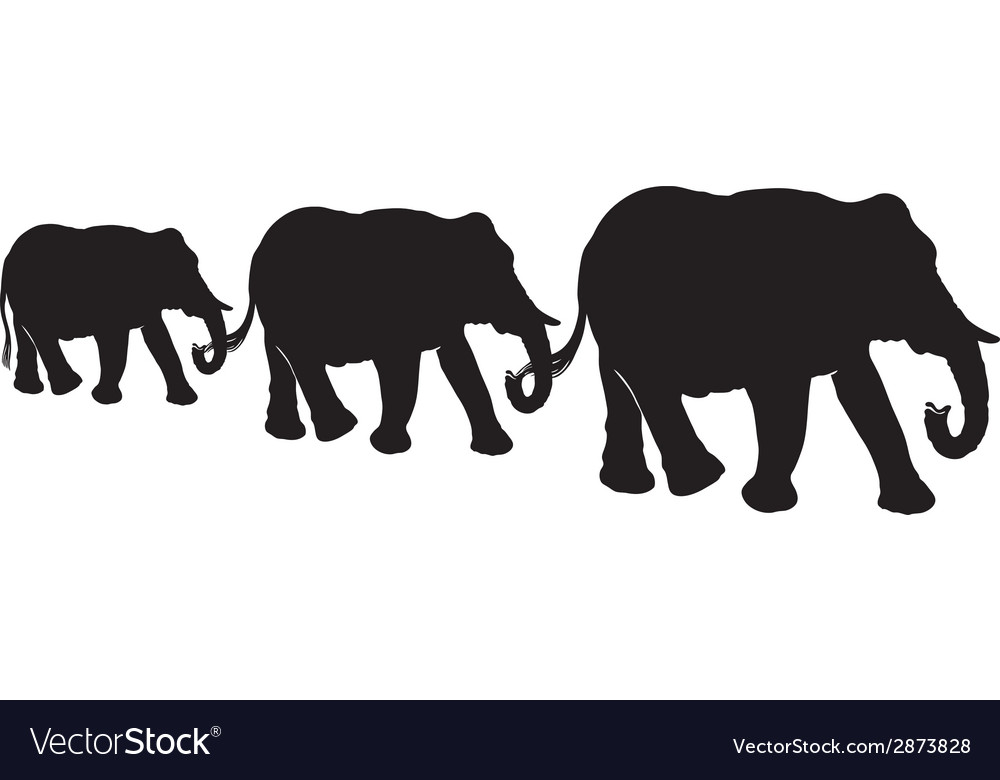 Elephants vector | Price: 1 Credit (USD $1)