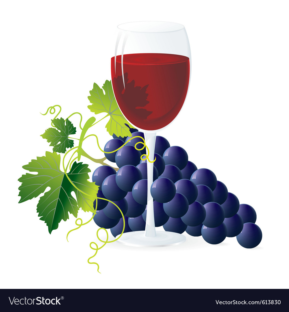 Vineyard vector | Price: 3 Credit (USD $3)