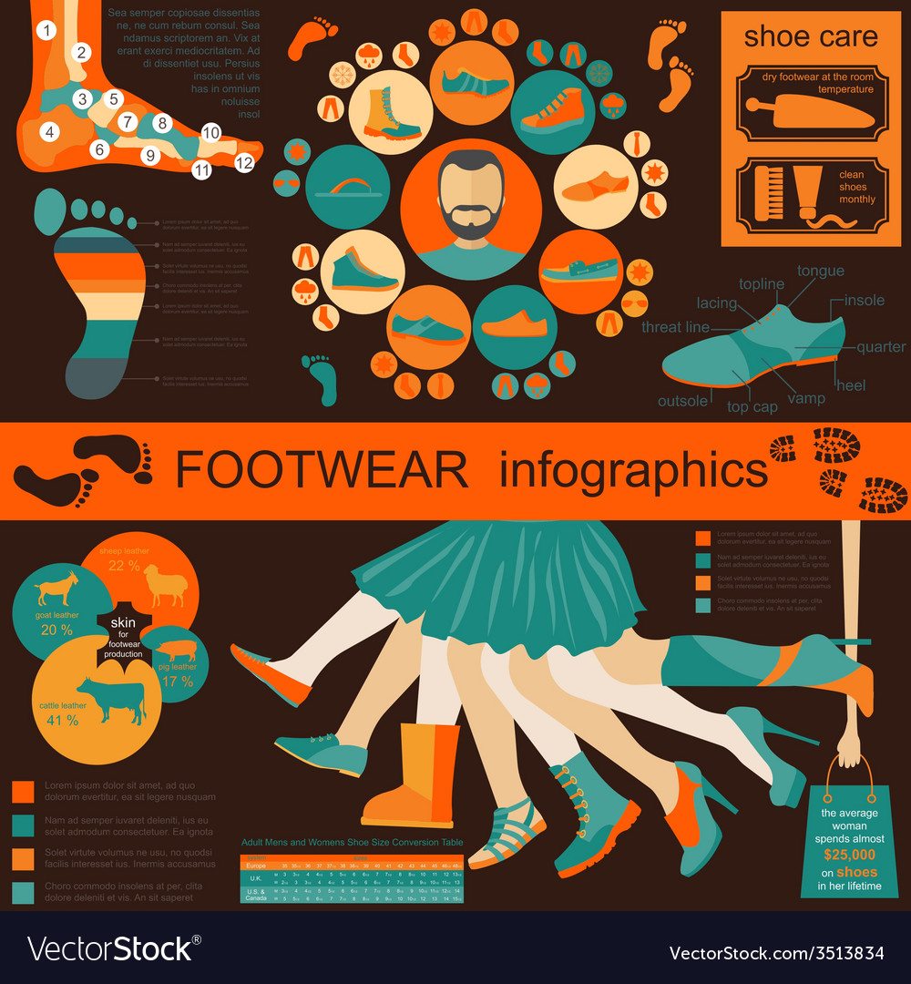Footwear infographics elements easily edited vector | Price: 1 Credit (USD $1)