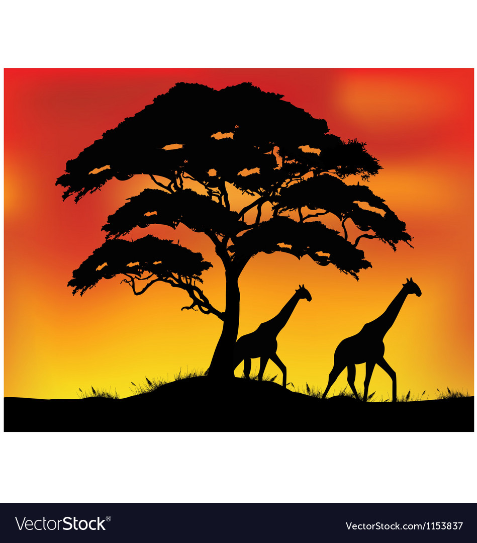 Safari background vector | Price: 1 Credit (USD $1)