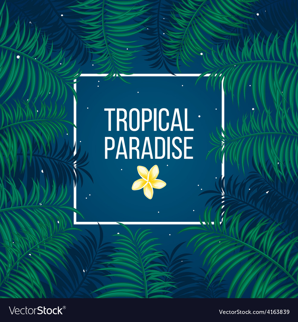 Tropical starry night paradise background template vector | Price: 1 Credit (USD $1)