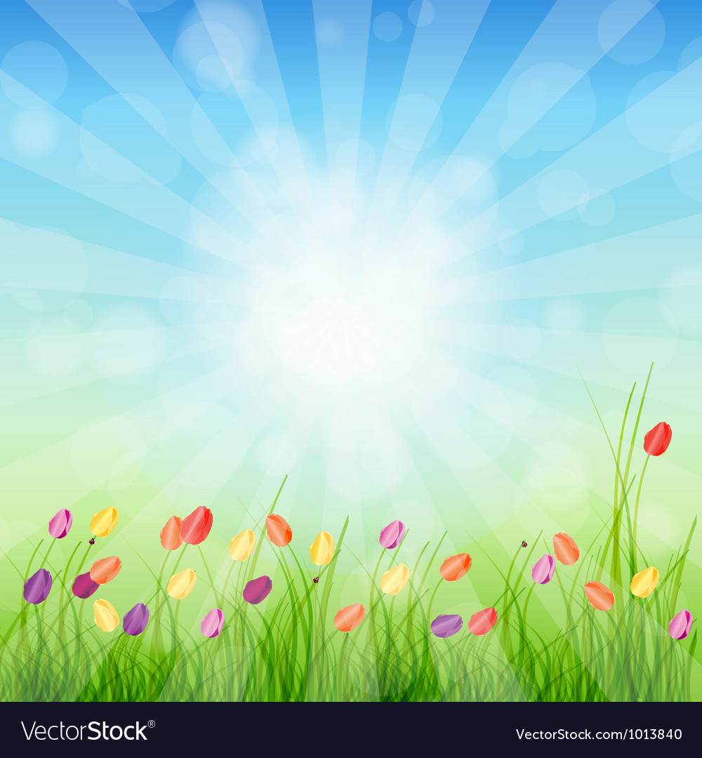 Summer abstract background with grass and tulips vector | Price: 1 Credit (USD $1)