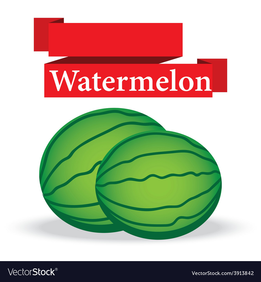 Fresh watermelon on white background vector | Price: 1 Credit (USD $1)