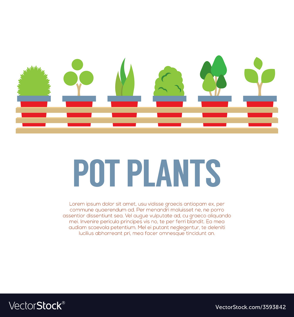 Pot plants in long wooden pot vector | Price: 1 Credit (USD $1)
