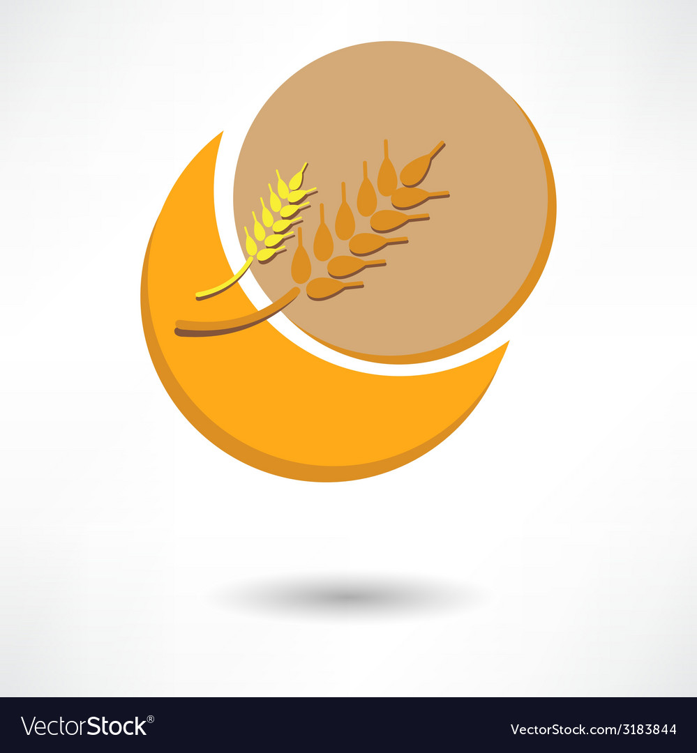 Grain background with sun rays vector | Price: 1 Credit (USD $1)