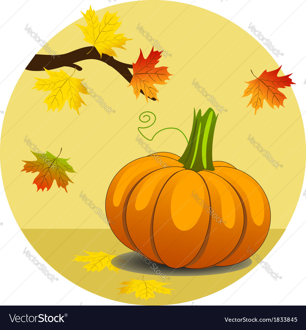 Pumpkin with maple leaves vector | Price: 1 Credit (USD $1)