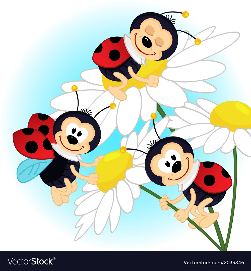 Ladybug on camomile vector | Price: 1 Credit (USD $1)