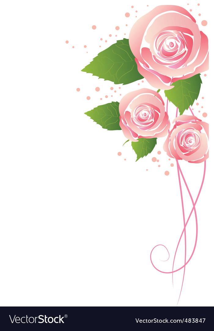 Three rose vector   Price: 1 Credit (USD $1)