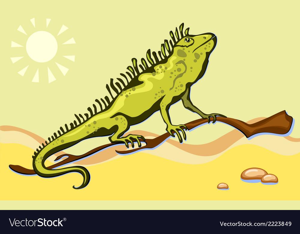 Lizard iguana in the desert vector | Price: 1 Credit (USD $1)