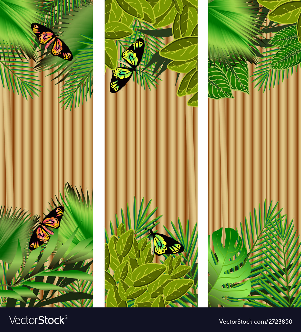 Tropical flowers and leaves and beautiful vector