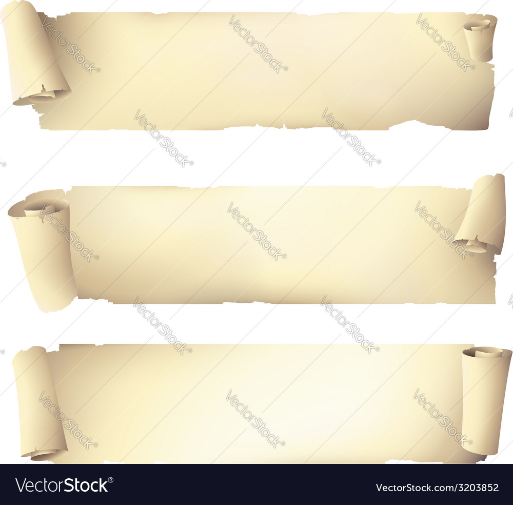 Old scroll paper banners  drawing vector | Price: 1 Credit (USD $1)